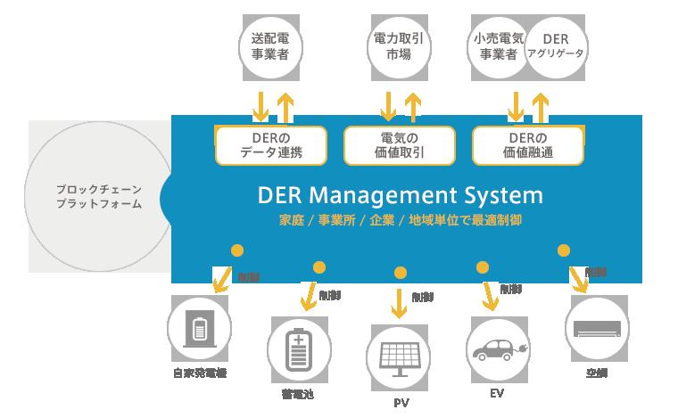 DER Management System